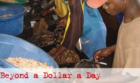 Documentary film: Beyond a dollar a day